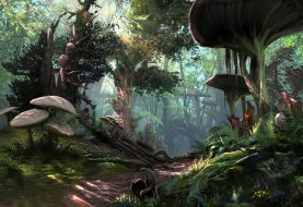 Morrowind Release Date, Trailer And Editions