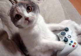 Top 10 Cats in Videogames