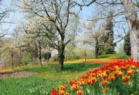 Spring Sale: The Bestsellers